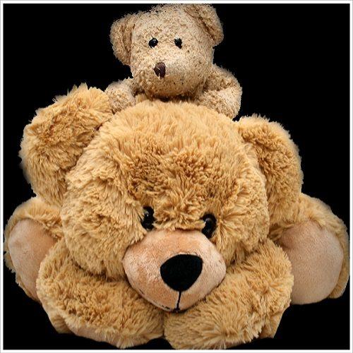 Wren Teddy - Stuffed Animals